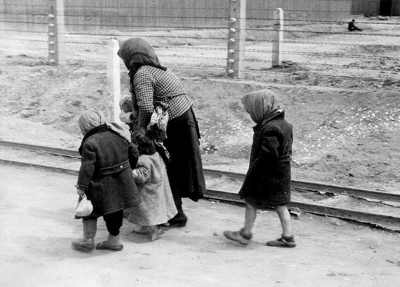 800px-Bundesarchiv_Bild_183-74237-004,_KZ_Auschwitz-Birkenau,_alte_Frau_und_Kinder